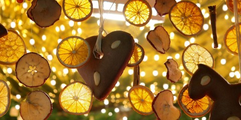 lemon-slices-232210_1280