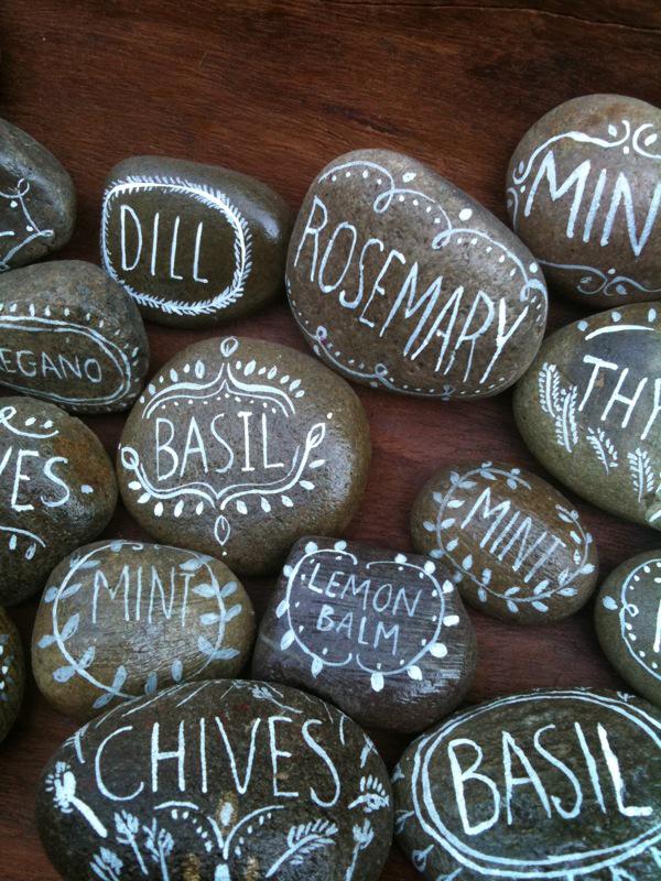 rock.herbs2