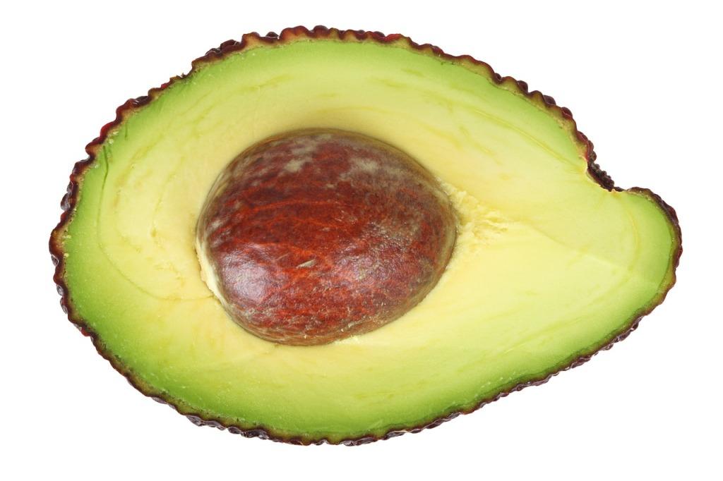 avocado-16041_1280