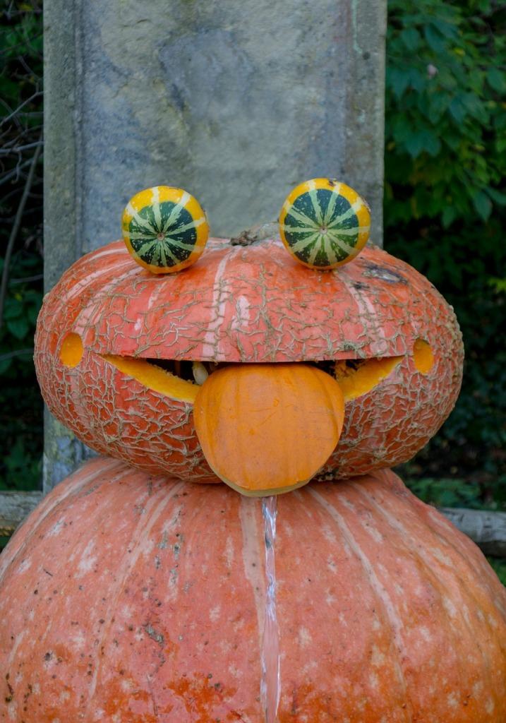 9 pumpkin-473921_1280