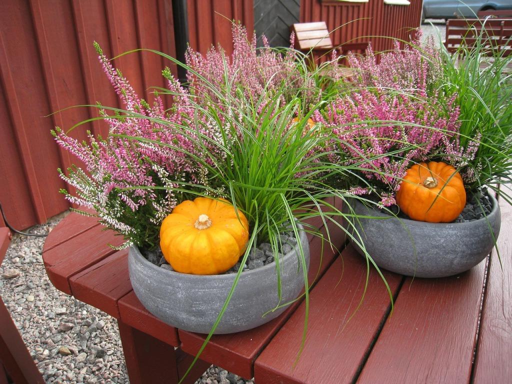 autumn-arrangement-209346_1280