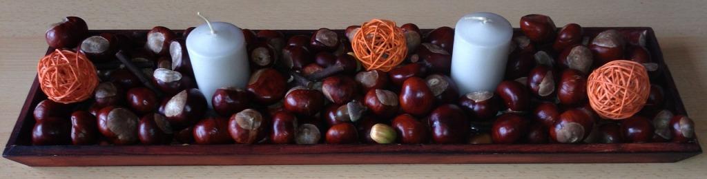 chestnut-953055_1280