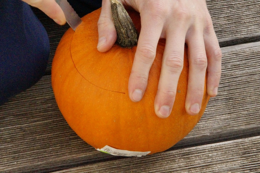 pumpkin-201096_1280