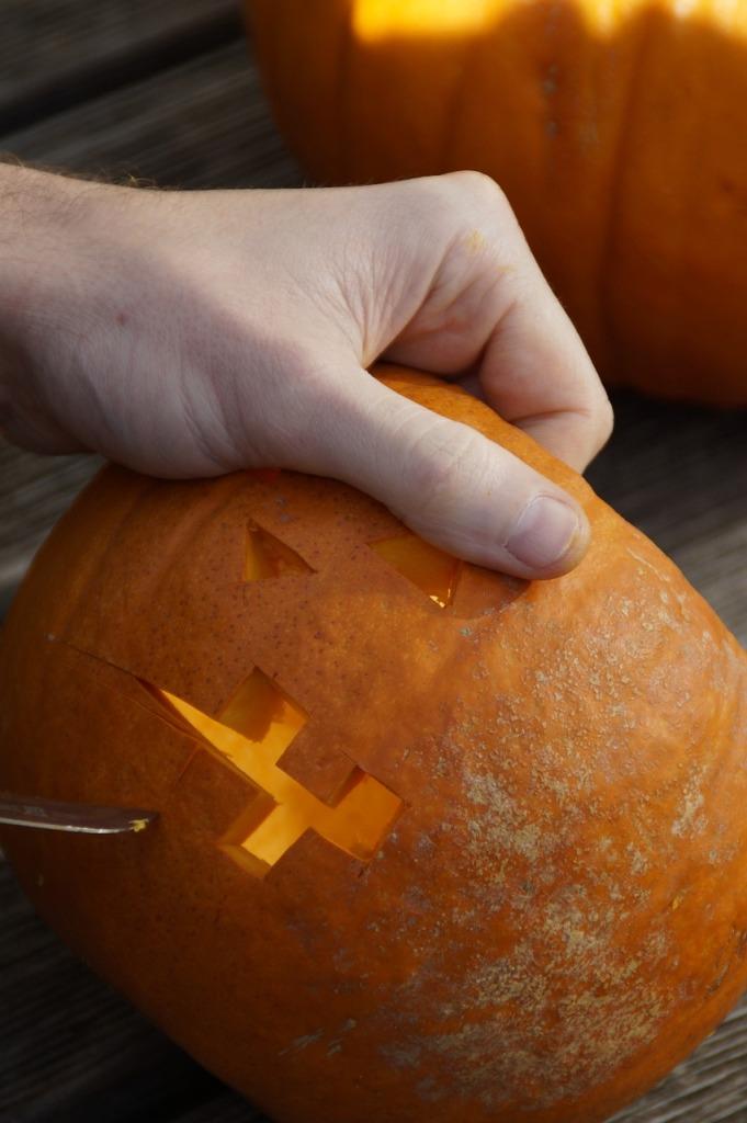 pumpkin-201111_1280