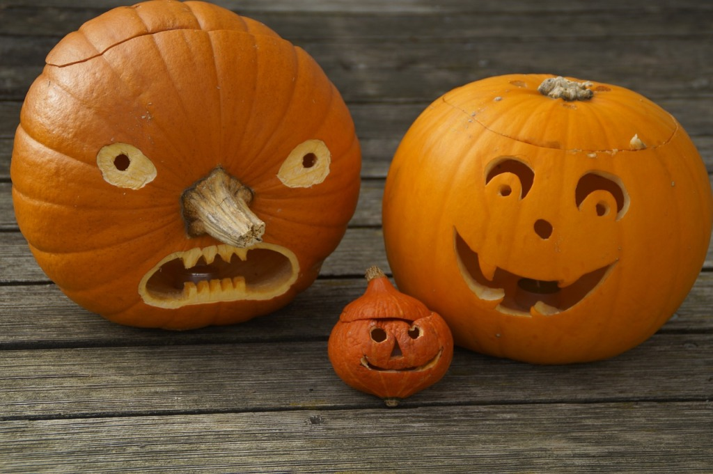 pumpkins-512113_1280