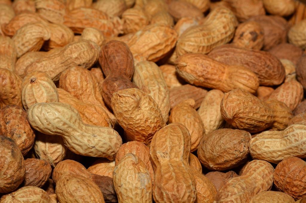 peanuts-618547_1920