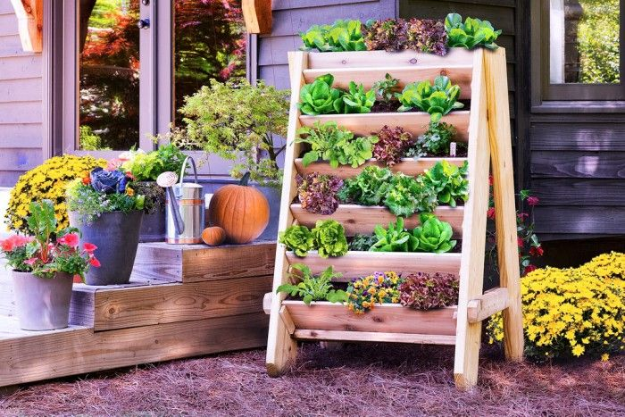 9 AD-Creative-DIY-Vertical-Gardens-For-Your-Home-15