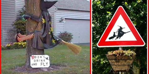 A-funny-halloween-picture-of-a-witch-who-has-crashed-into-a-tree-while-flying-on-her-broomstick-horz