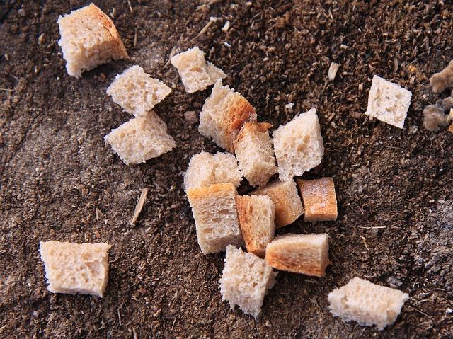 Nejlevnější psí čistící pamlsek je usušený chleba. Ale funguje jen pro žravá a nezmlsaná zvířata.