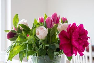 flowers-759586_1280