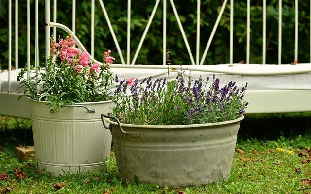floral-decoration-896205_640