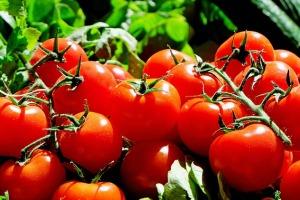 tomatoes-1280859_640