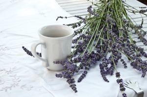 lavender-1636567_1280