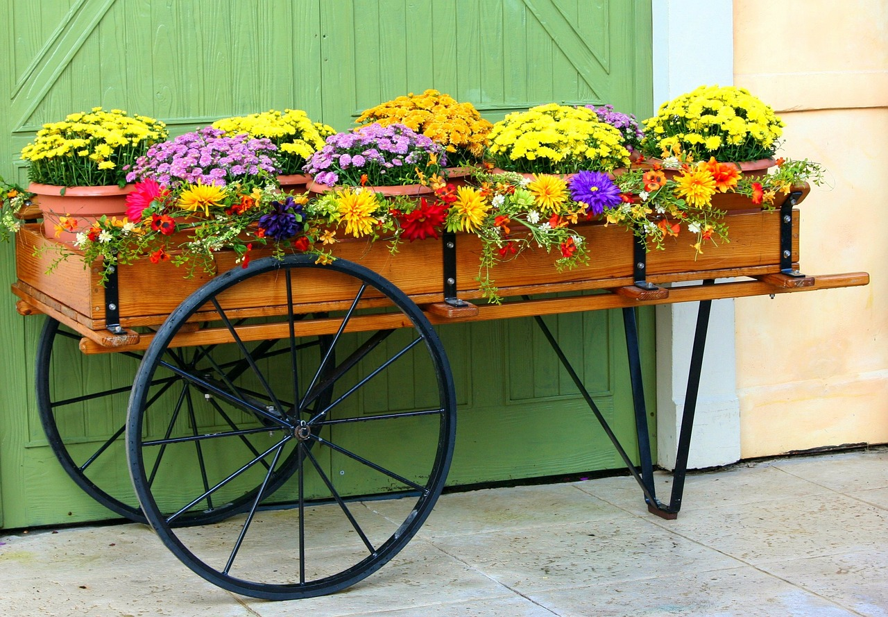 kvetiny-zahrada-dekorace