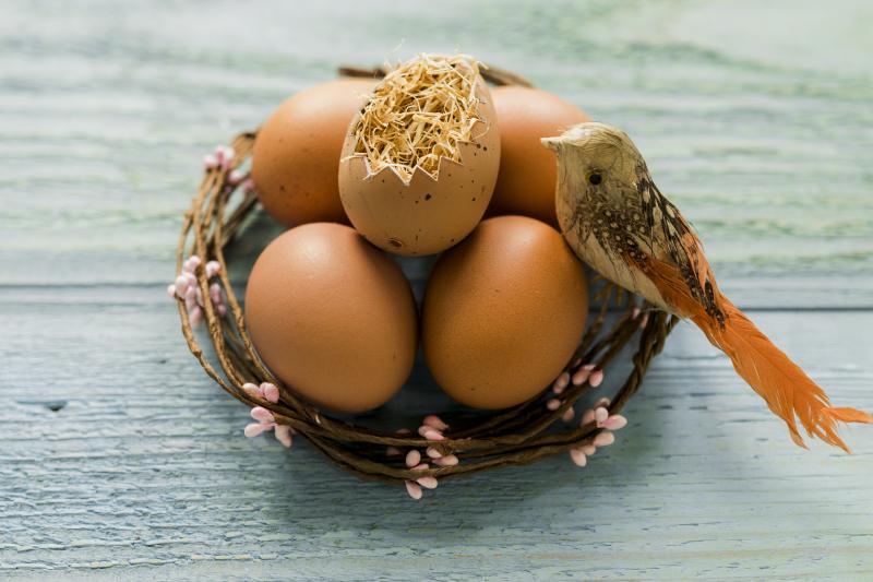 velikonoční-vajíčka-dekorace-ptáček